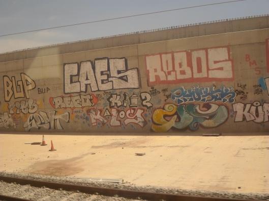 SAM_1167